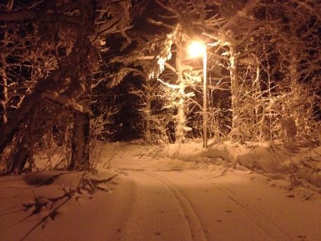 During my winter break, I like to X Country ski in the U.P.